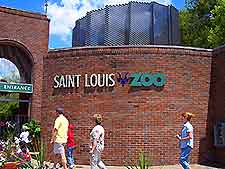 st_louis_zoo4